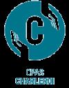 logo cpas charleroi sans fonds